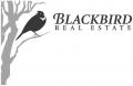 Blackbird Real Estate
